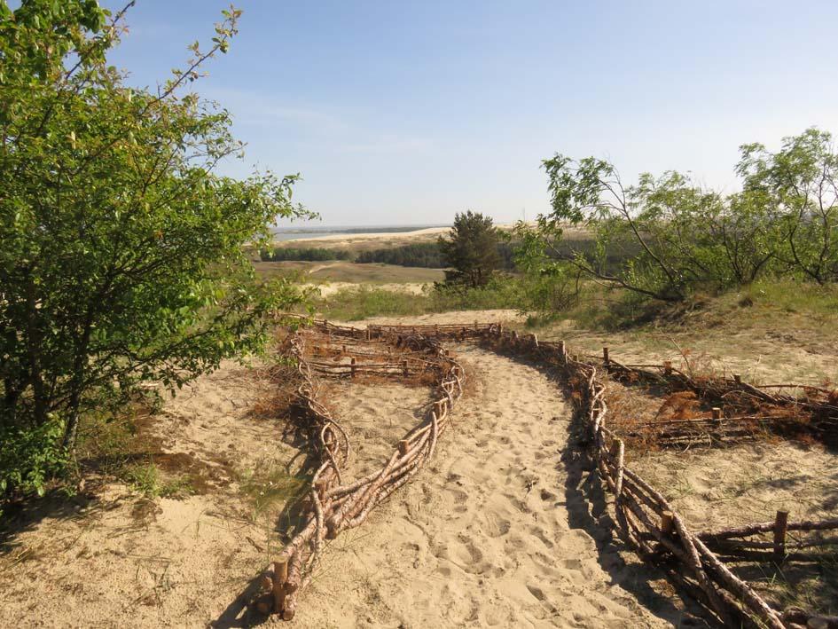 Befestigung der Dünen