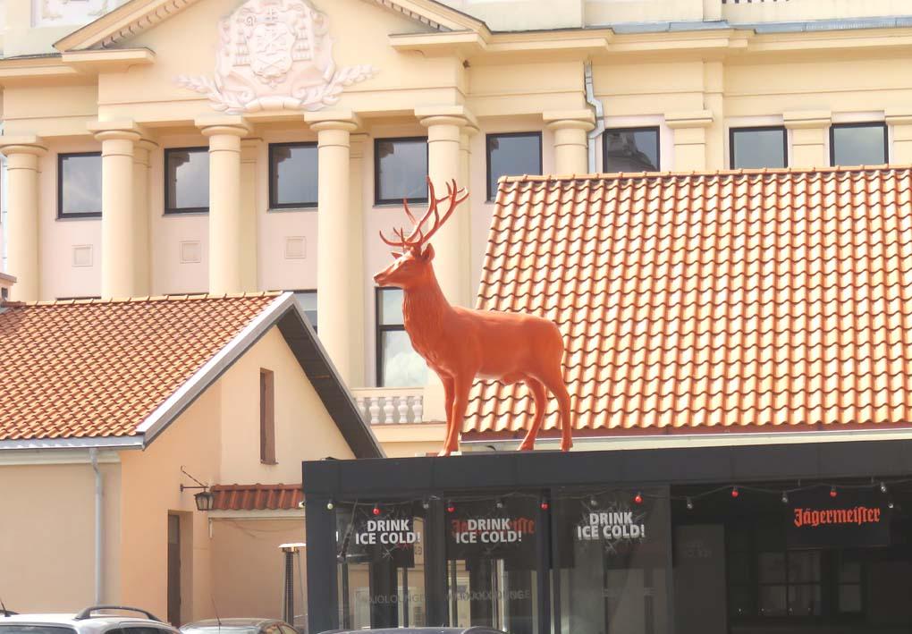 Kurioses in Kaunas