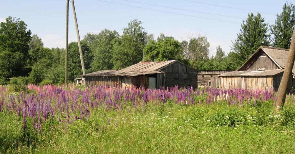 Altes Gehöft in Lettland