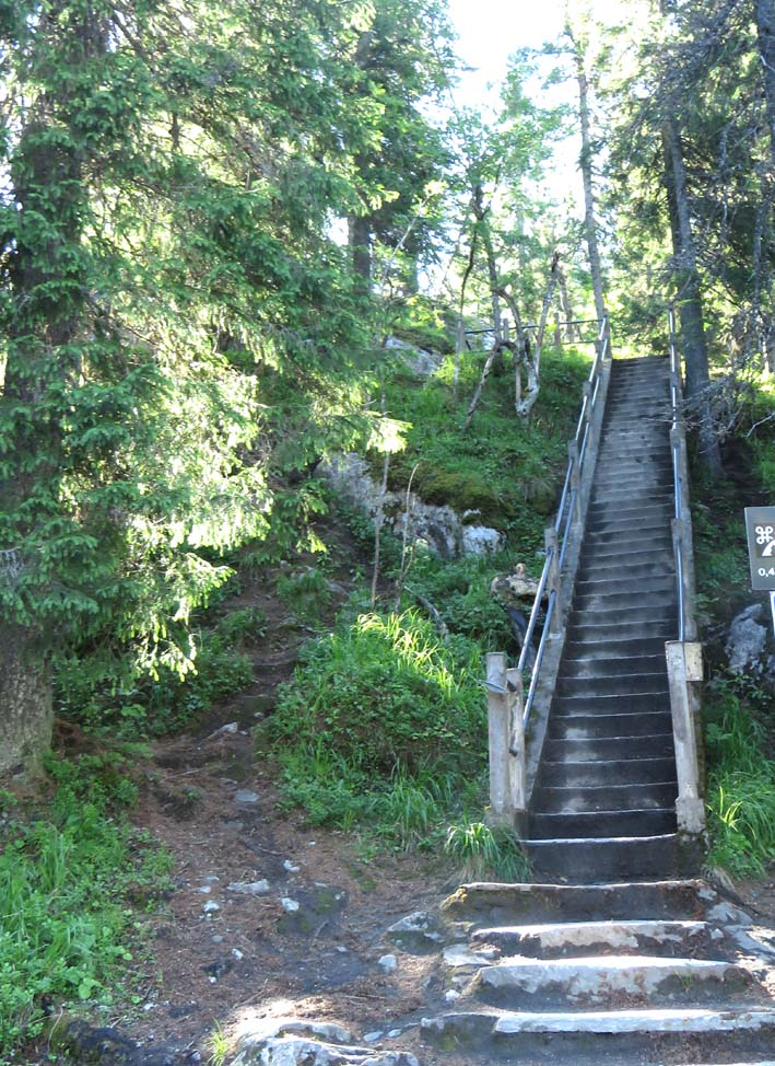 Aufstieg zum Ukko-Koli